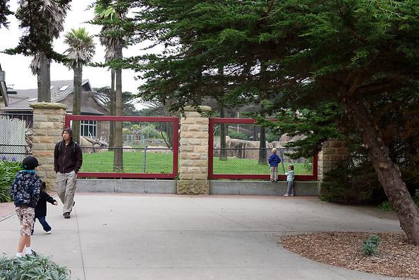 San Francisco Zoo 9/5/11