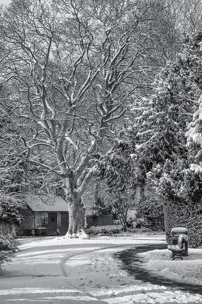 more snow in Ripon-4.jpg