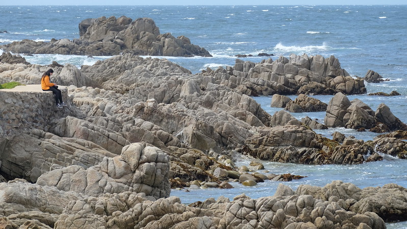 California Day 3 Monterey 05-29-2017 79.JPG