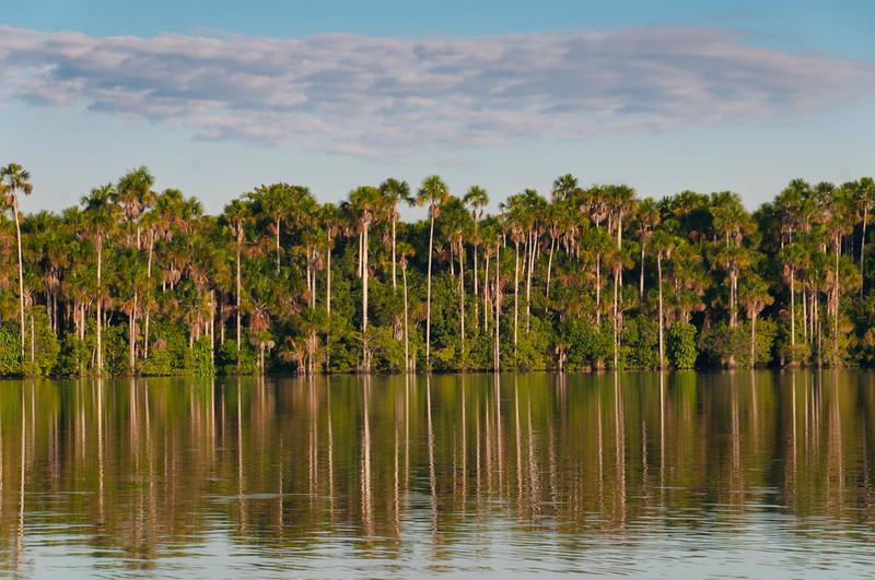 Lake Sandoval-10.jpg