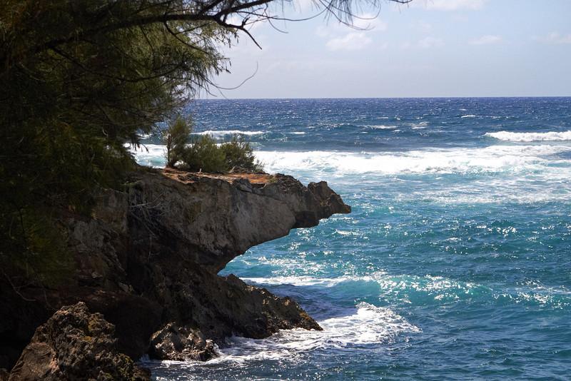 Hawaii915.jpg
