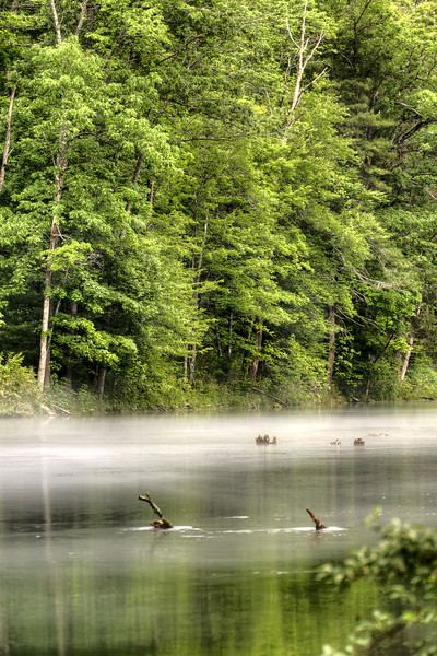 A mist rises above the South Holston River at Osceola Island near Bristol, TN on Sunday, June 9, 2013. Copyright 2013 Jason Barnette