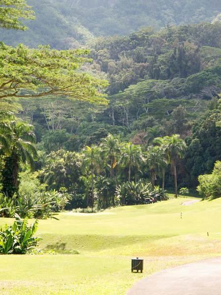 golf honolulu 2011 - 013.jpg