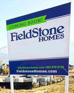 FieldStone Homes - Jones Farm - Architectural Photography
