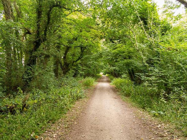 Ancient Trackways - Harrow Way