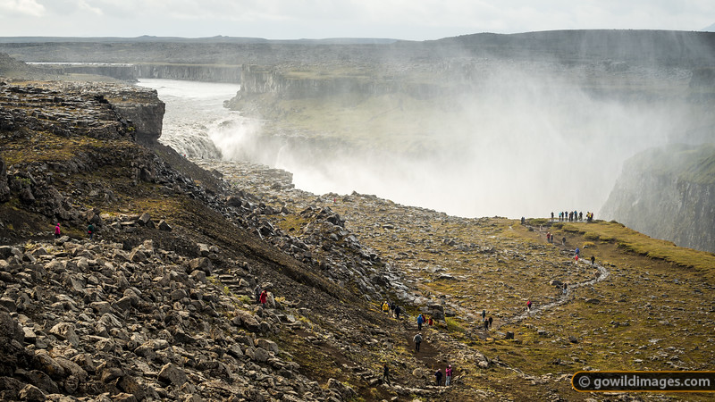 Dettifoss falls – 'the most powerful' in Europe. If the Barðabunga volcano erupts and melts through the 700-900m of glacial ice above it, this river will flood severely and the landscape could permanently change. As of September 2014, the road on the West side is closed in case this happens.