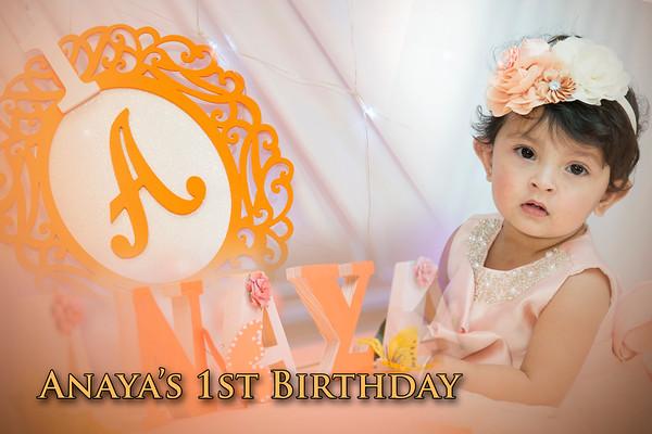 Anaya's 1st Birthday