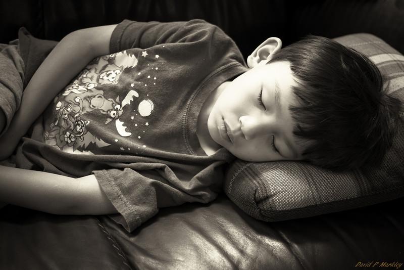 Sleepy Son
