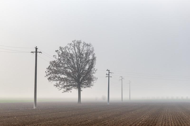 Fog - Cadelbosco di sopra, Reggio Emilia, Italy - December 9, 2018
