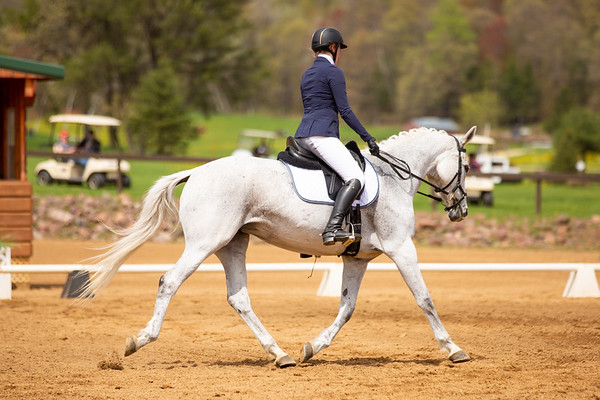 Otter Creek Spring HT 2019- Dressage