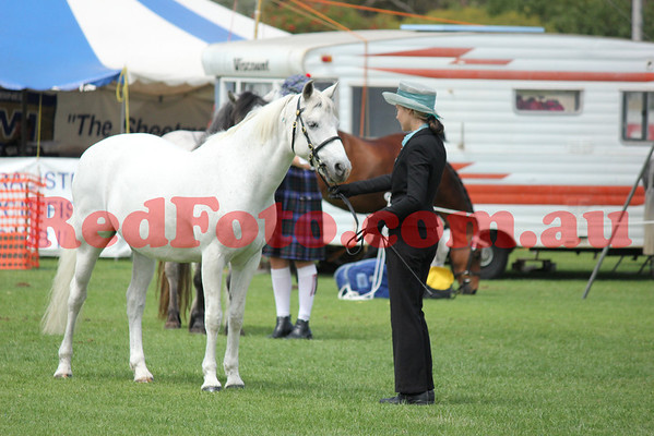 2011 11 05 Busselton Ag Show Arena_2