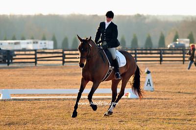 2010-02-10 USEA Horse Trial