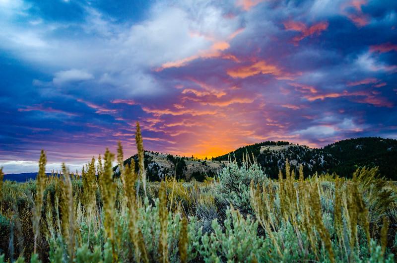 Dornans Sunrise-1.jpg