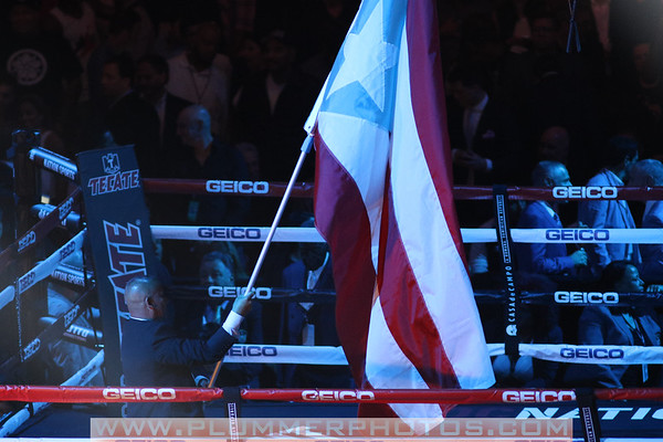 6/6/2015 Miguel Cotto vs Daniel Geale