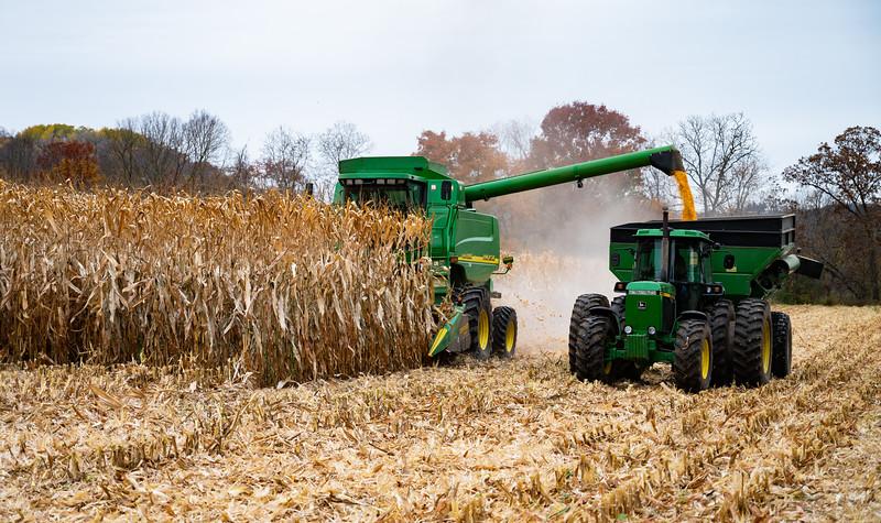 10-19-2020-harvest-6.jpg