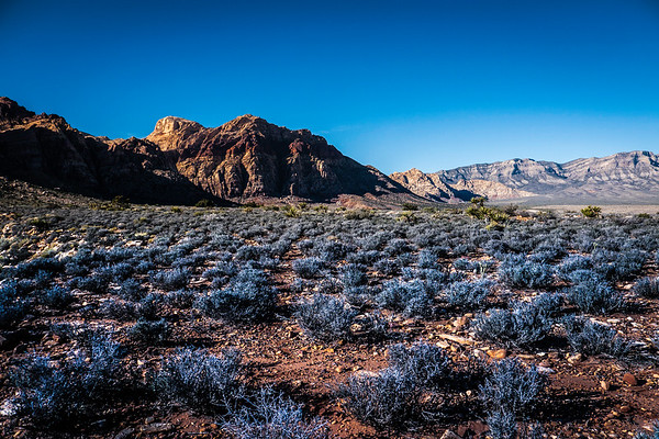 RED ROCK CANYON | NV