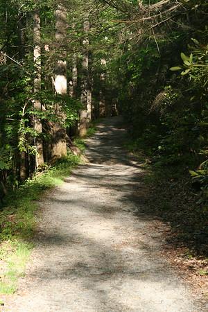 Ramsay Cascades Smoky Mountains
