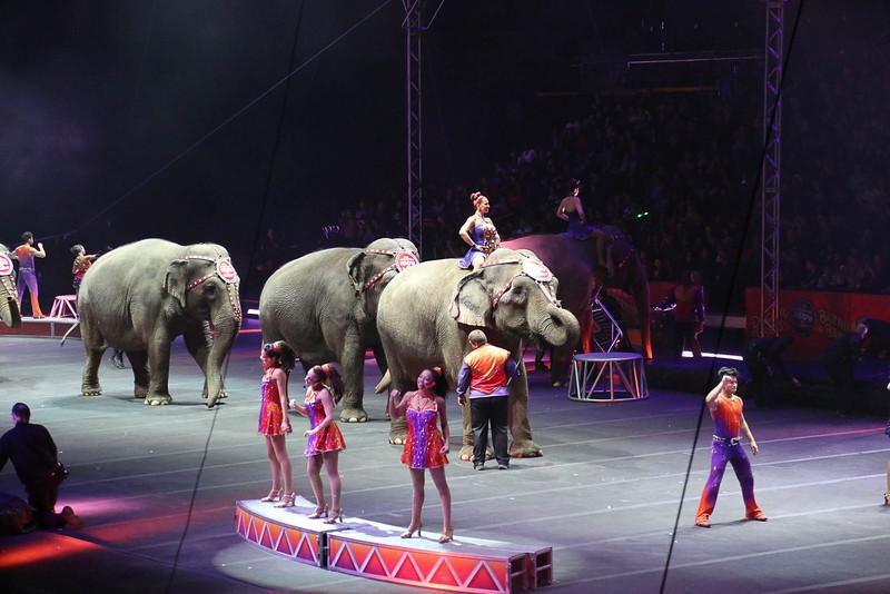 Circus_27.jpg