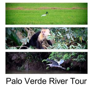 Palo Verde River Tour