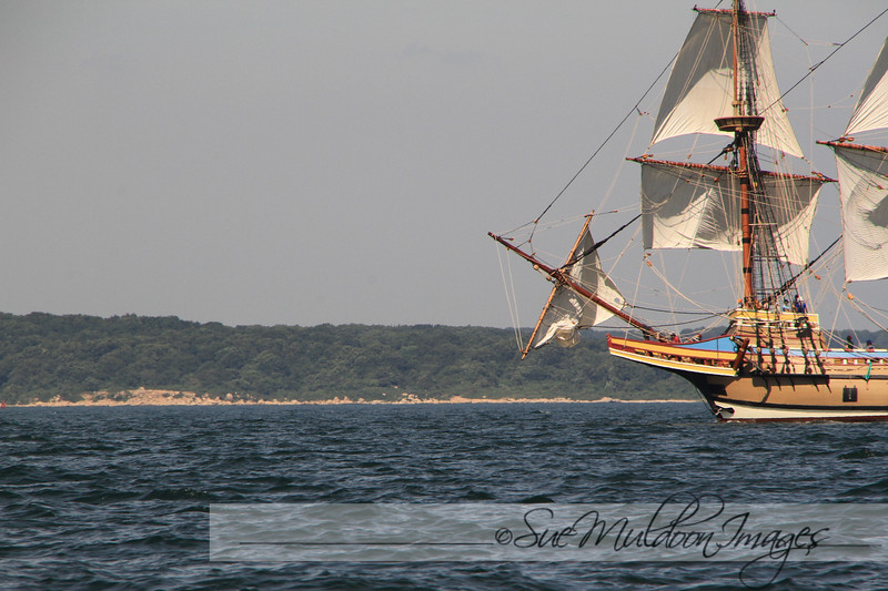 Mayflower 2020 New London -169.jpg