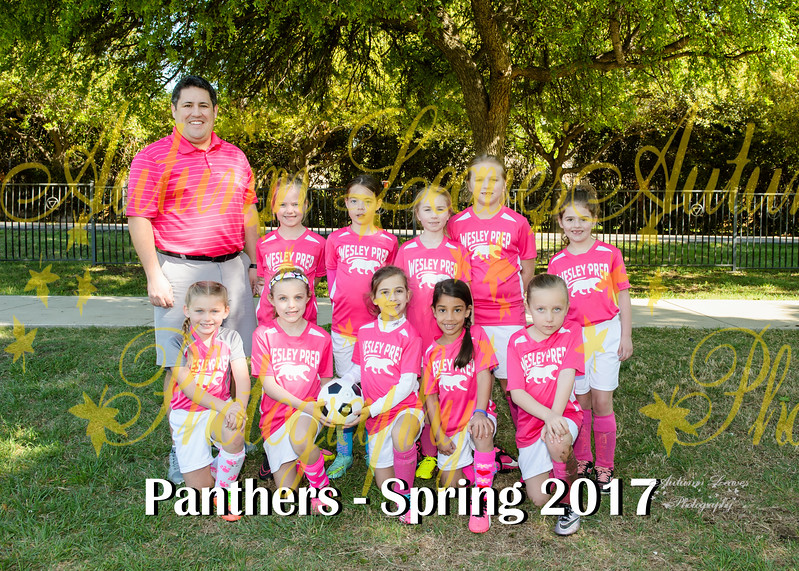 20170325 - #T8 WP Pink Panthers
