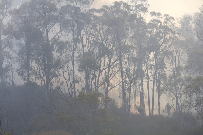 Firefighters from a joint  Australian and U.S. strike team disappear in smoke as they blackline an area in order to control a bush fire and protect nearby structures, in Alpine National Park near Omeo, Victoria, Australia, January 12, 2020. The Australian firefighters are with Country Fire Authority Australia and the U.S. team is the third rotation in for 28 days and they come from five different U.S. agencies, the U.S. Forest Service, U.S. Fish and Wildlife, Bureau of Land Management, Bureau of Indian Affairs and the National Park Services.