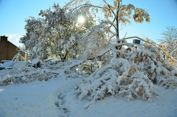 October 30, 2011 Snow Storm