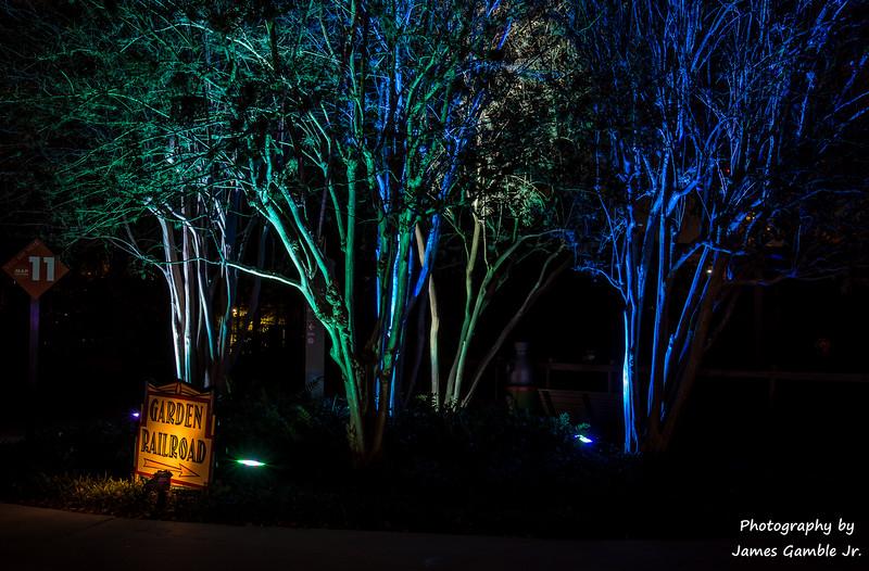 Houston-Zoo-Lights-3128.jpg