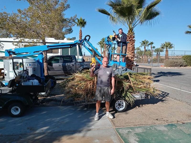 Tree Trimming crew.jpg