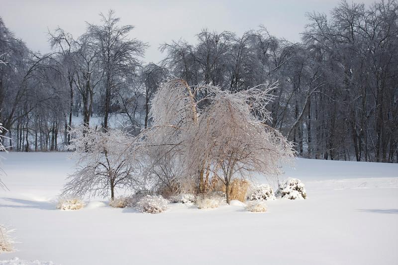 Snow Day 2 2009