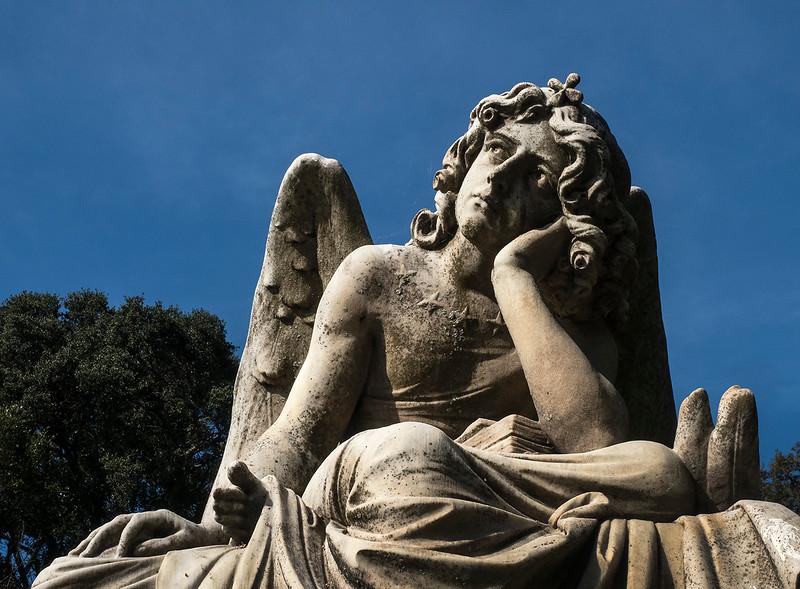 mv angel.jpg