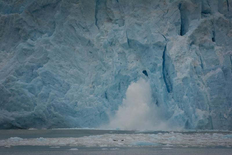 Kenai-Fjords-103.jpg