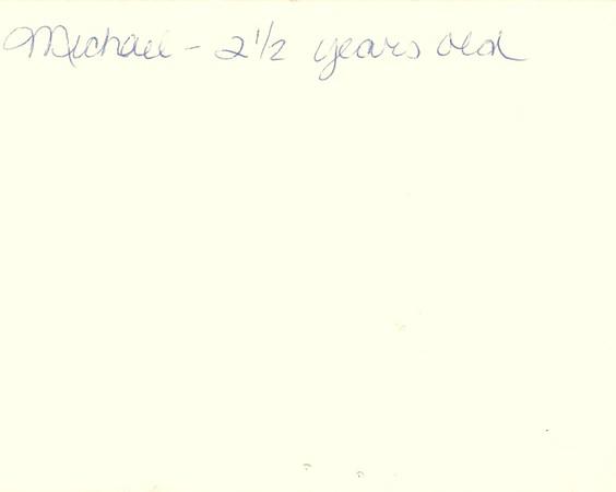 1989_Summer_Storybook_Forest_and_Orange_Streaks
