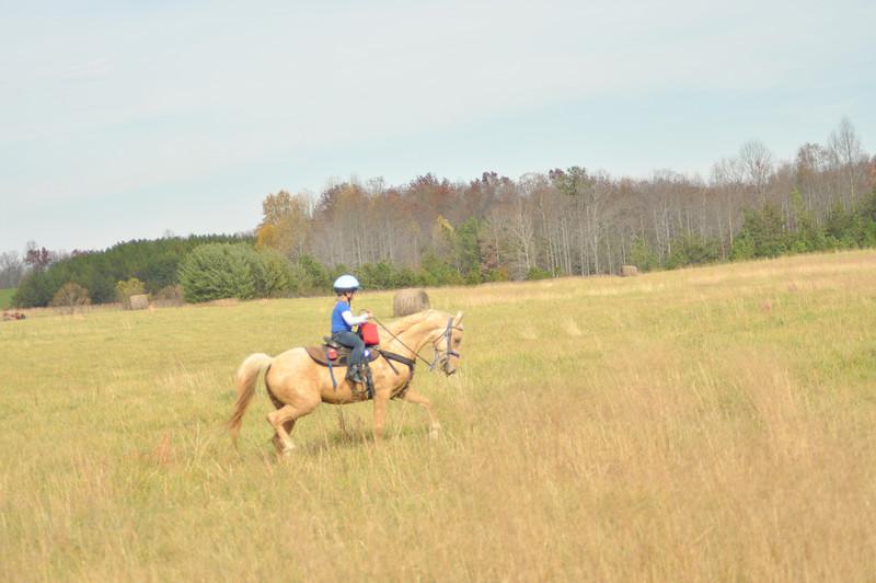 horse-riding-0136.jpg