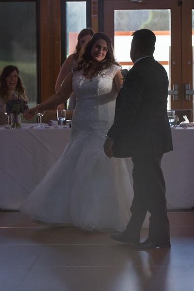 Houweling Wedding HS-289.jpg