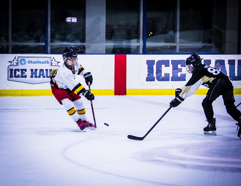 Bruins-250.jpg