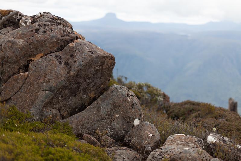 Tasmania_2015_198.jpg