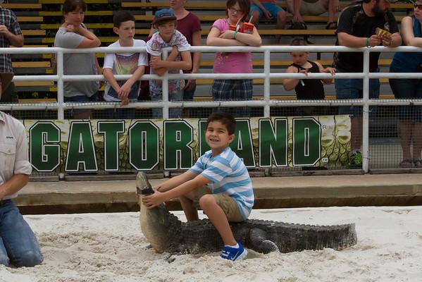 Gatorland - April 2013