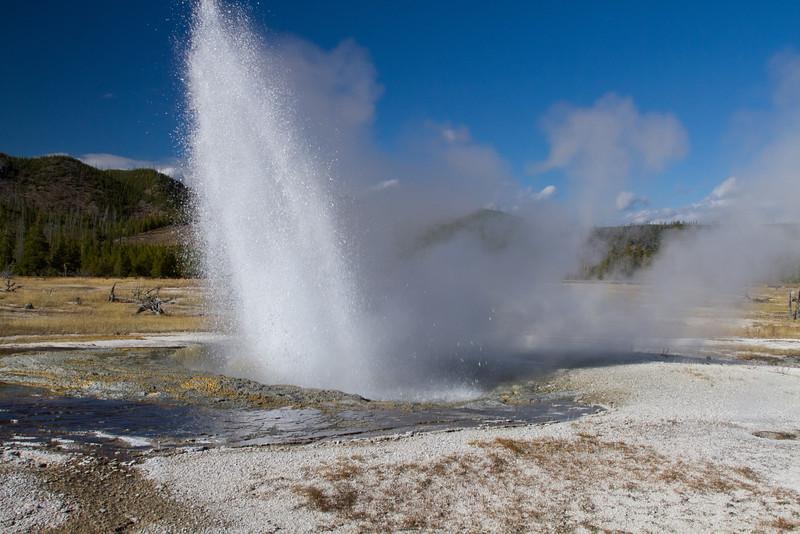 Yellowstone2 421.jpg
