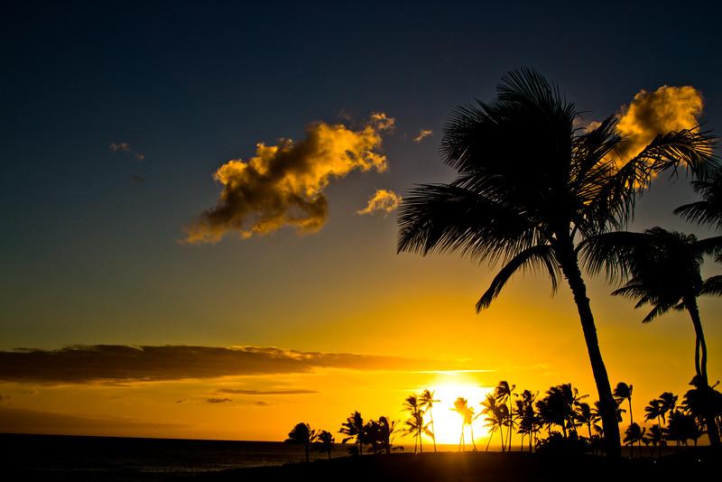 Journey into Oahu Photograph 189