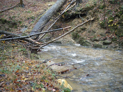 October 2012 Breezewood Stream Watch Report