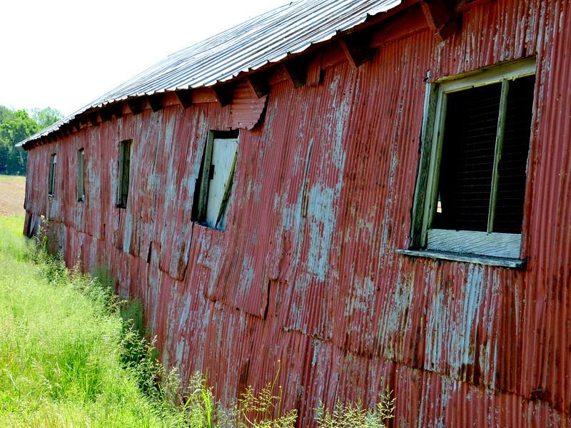 Peggy's Farm