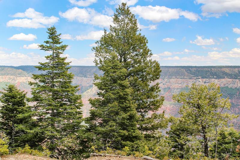 Grand Canyon National Park - North Rim