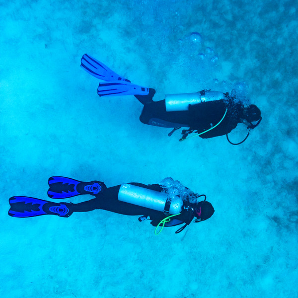 Scuba divers underwater, Tarpon Cayes, Belize Barrier Reef, Lighthouse Reef, Belize