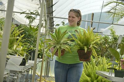 29523 - Greenhouse Scenes