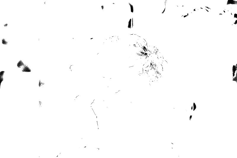 DSC05780.png