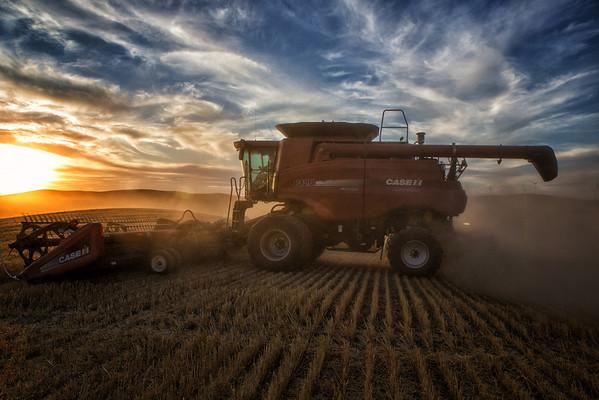 Palouse Wheat Harvest