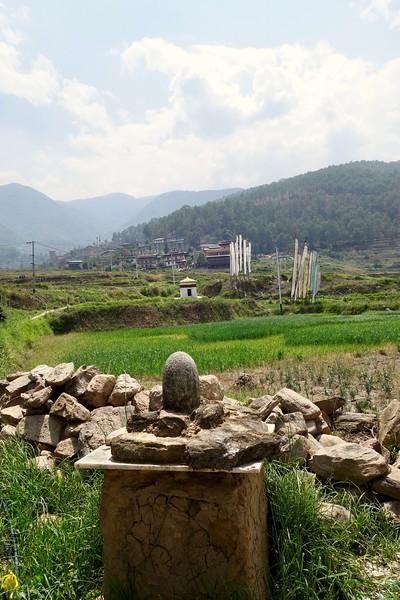 linga along valley fields in Sopsokha