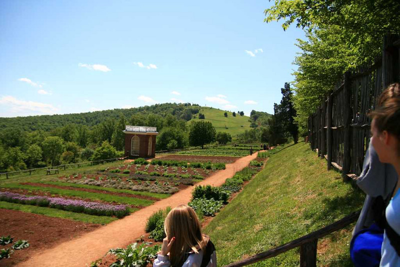 View of part of Jefferson's garden - Monticello