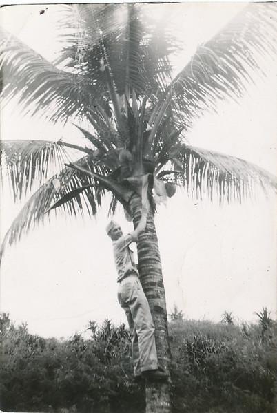 Uneate Village, Guam.jpg